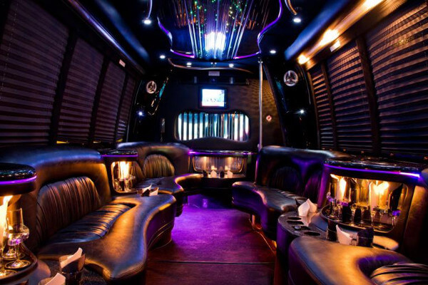 15 person party bus rental Stockton